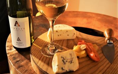Wino Blanc Barrique i ser Kazik