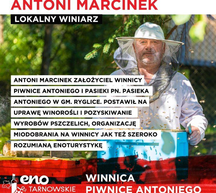 Winnica Piwnice Antoniego