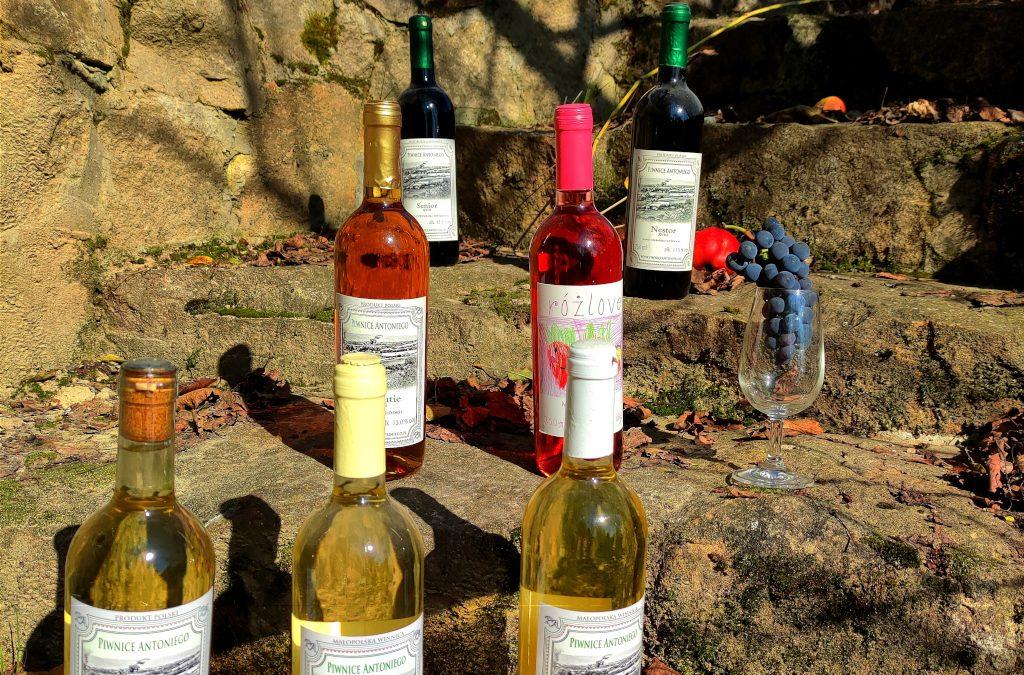 Winnica Piwnice Antoniego: wina, miody, octy winne